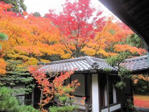 京都大徳寺 高桐院