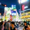 "Phrasing ""〜がある(〜ga aru)"" and ""〜がいる(〜ga iru)"" with native Japanese voice (N5 level)"